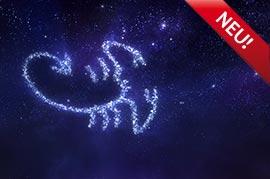 Sternzeichen Skorpion: Liebe, Sex und Partnerschaft